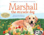Marshall the Miracle Dog (Illustrated)