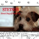Stetson: Street Dog of Park City