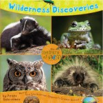 Nature of God: Wilderness Discoveries (Illustrated)